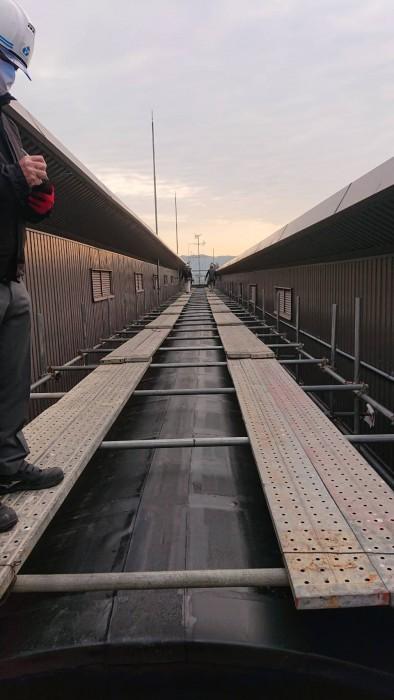 京都伏見の都市公園体育館屋上の天窓工事の為の通路足場3